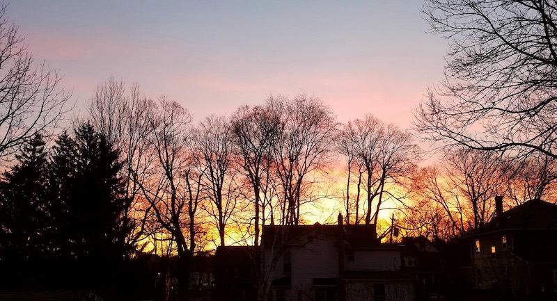 Photo of a pink sunrise with the silohuette of trees and houses.